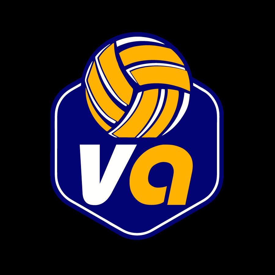 volleyart