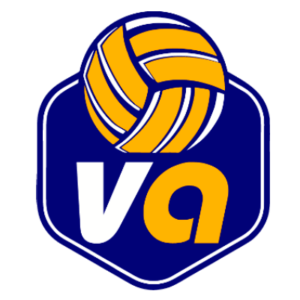Volleyart school