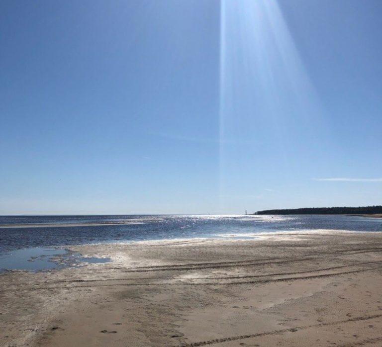 активные выходные финский залив