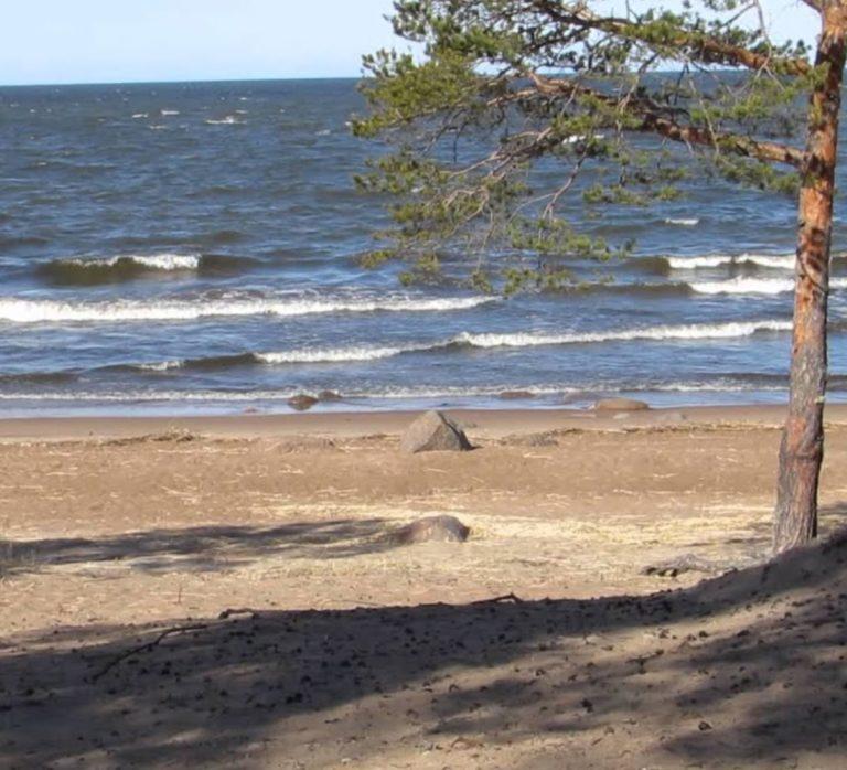 активный отдых финский залив
